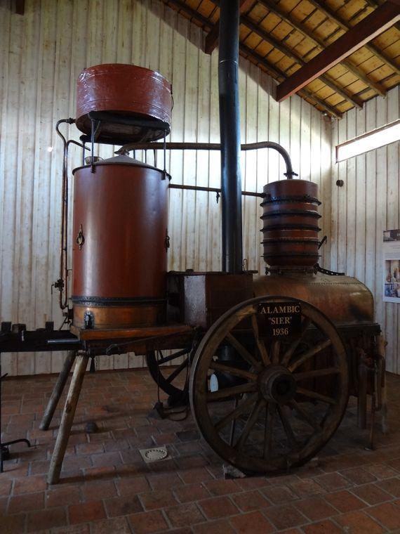 Produits régionaux Armagnac - Mimizan - source Qualité Landes