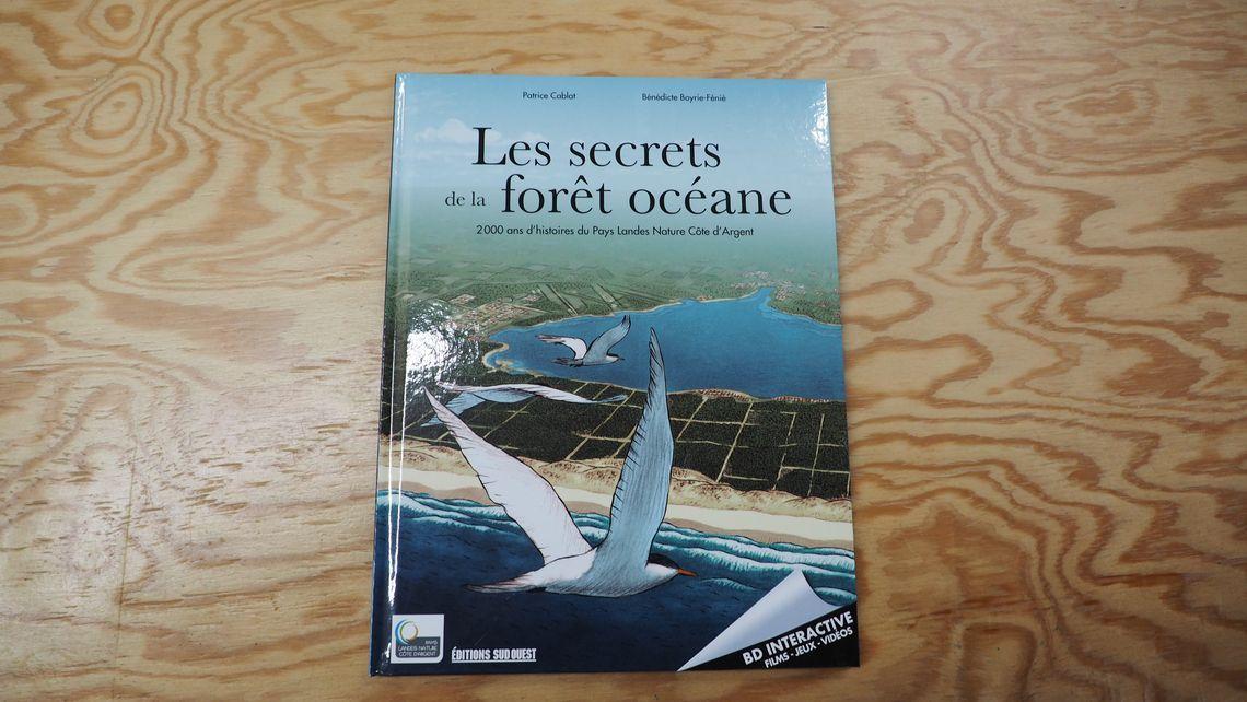 bd interactive Pays Landes Côte d'Argent Mimizan