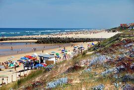 La plage de Mimizan - surf
