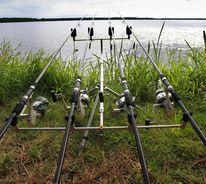 Mimizan - pêche - poisson - lac - carpe - brochet - anguilles - sandre - étang - famille - détente - repos - AAPPMA -