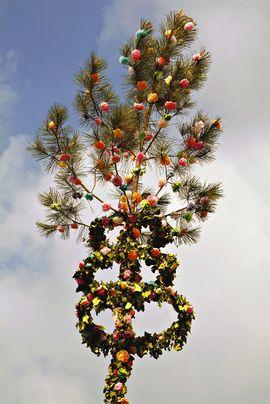 Pin des landes décoré à Mimizan