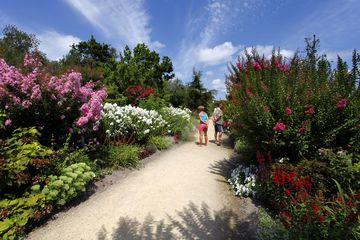 promenade fleurie - jardin - label 4 fleurs - Mimizan - promenade - sentiers - senteurs - faune - flore - arbustes - plantes - espèces - végétaux