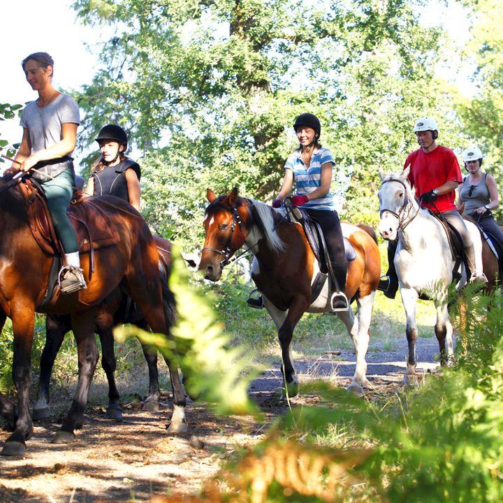 Les activités nature de Mimizan, poney, accrobranche, foret, sentiers pédestres dans les Landes