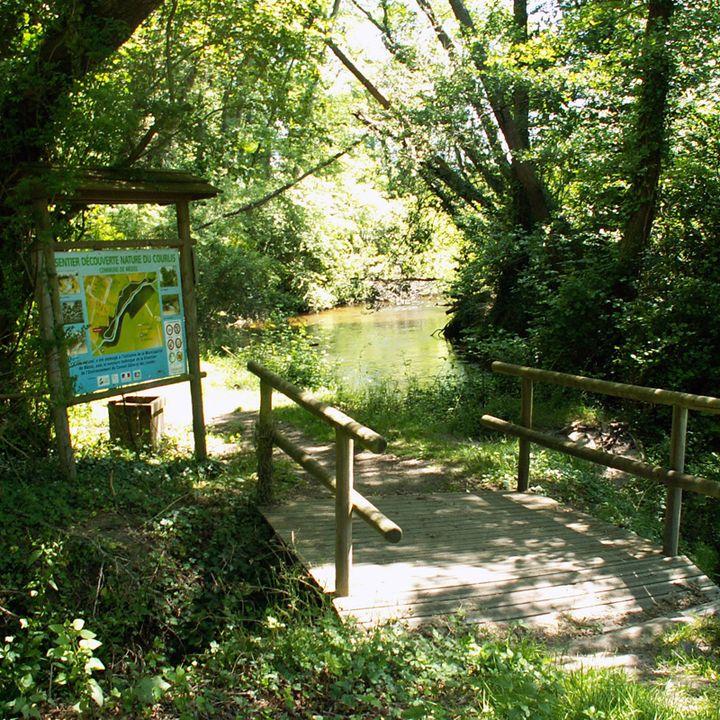 Les sentiers pédestres de Mimizan et les balades en forêt dans les Landes