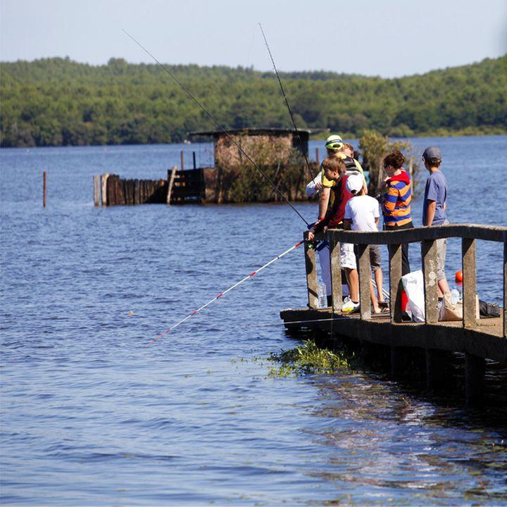 Le lac d'Aureilhan - Mimizan ; ponton du Duc de Westminster ; pêche à la tonne