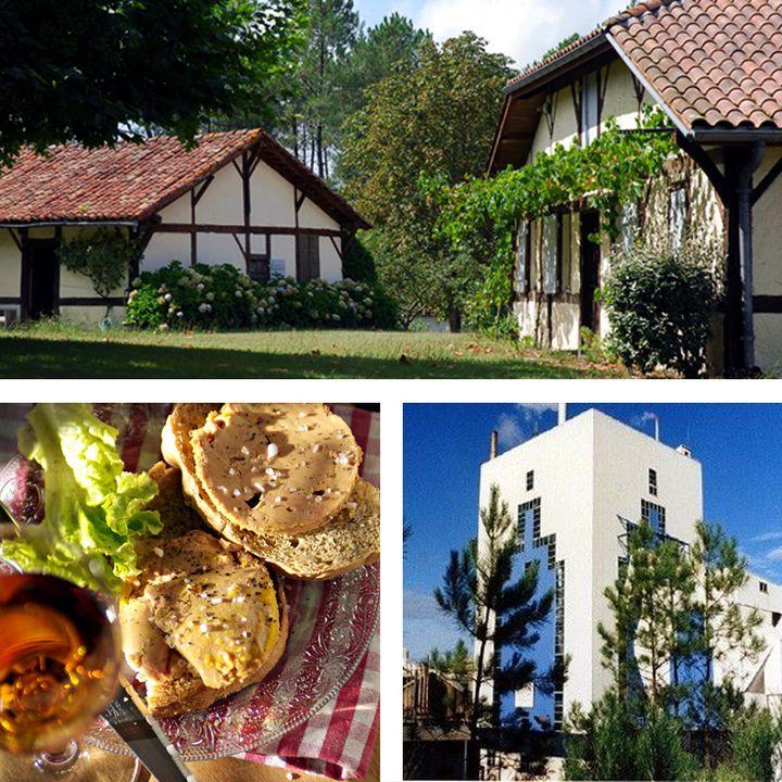visite d'usine à Mimizan - fontaines miraculeuses à Pontenx les Forges - foie gras