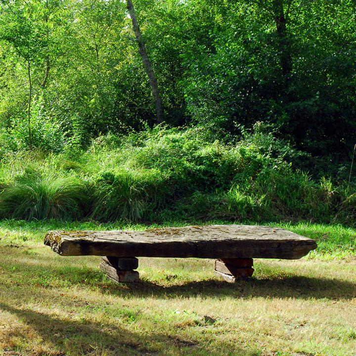 Le sentier de découverte à Saint-Paul-En-Born proche de Mimizan