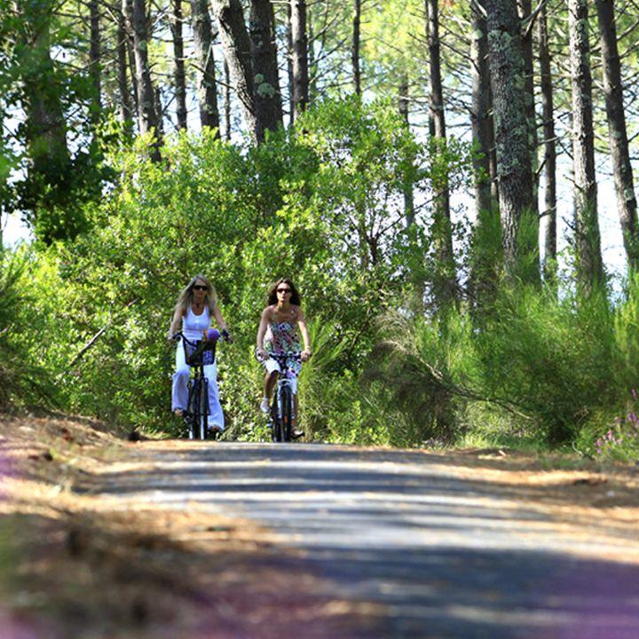 Les pistes cyclables de Mimizan, balades à vélo en forêt dans les Landes