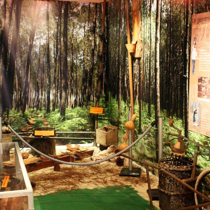 La maison du patrimoine et des traditions landaises à Mimizan