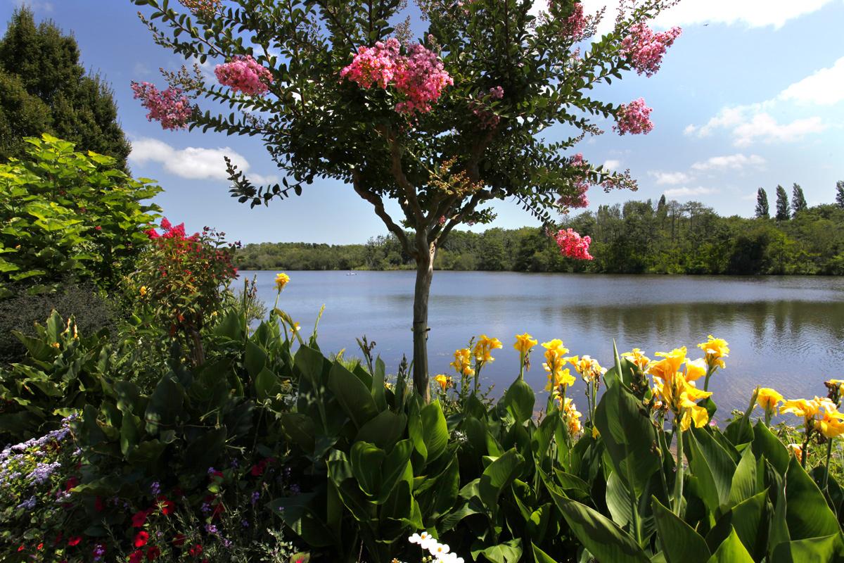 Promenade fleurie de mimizan lac ville fleurie - Les jardins de l oyat mimizan ...