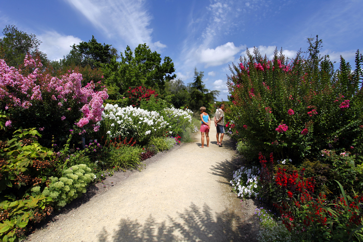 promenade fleurie de mimizan lac - ville fleurie