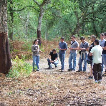 CHARTE FORESTIERE DE TERRITOIRE à MIMIZAN