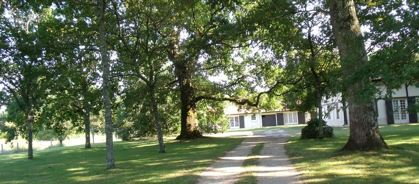 Location Maison 4 personnes Larrieu Marc à MIMIZAN