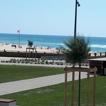 Renting Tarbouriech Olivier Apartment persons 4 in MIMIZAN PLAGE