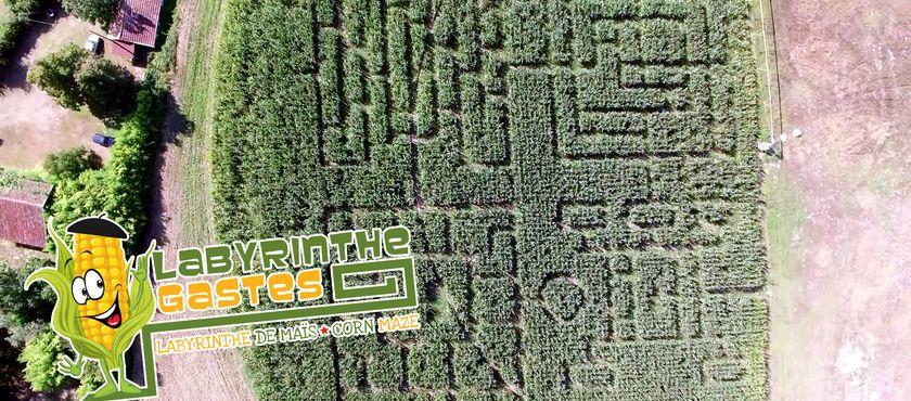 Labyrinthe de Maïs à GASTES (40)