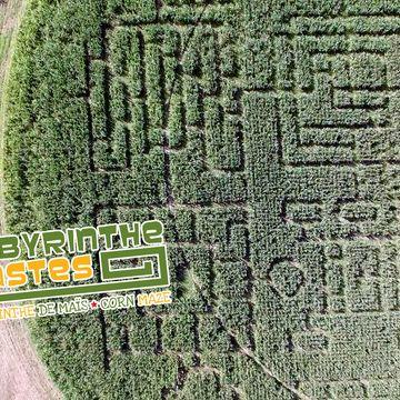 Labyrinthe de Maïs  in GASTES