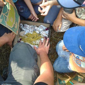 PROMENONS NOUS DANS LES BOIS à MIMIZAN