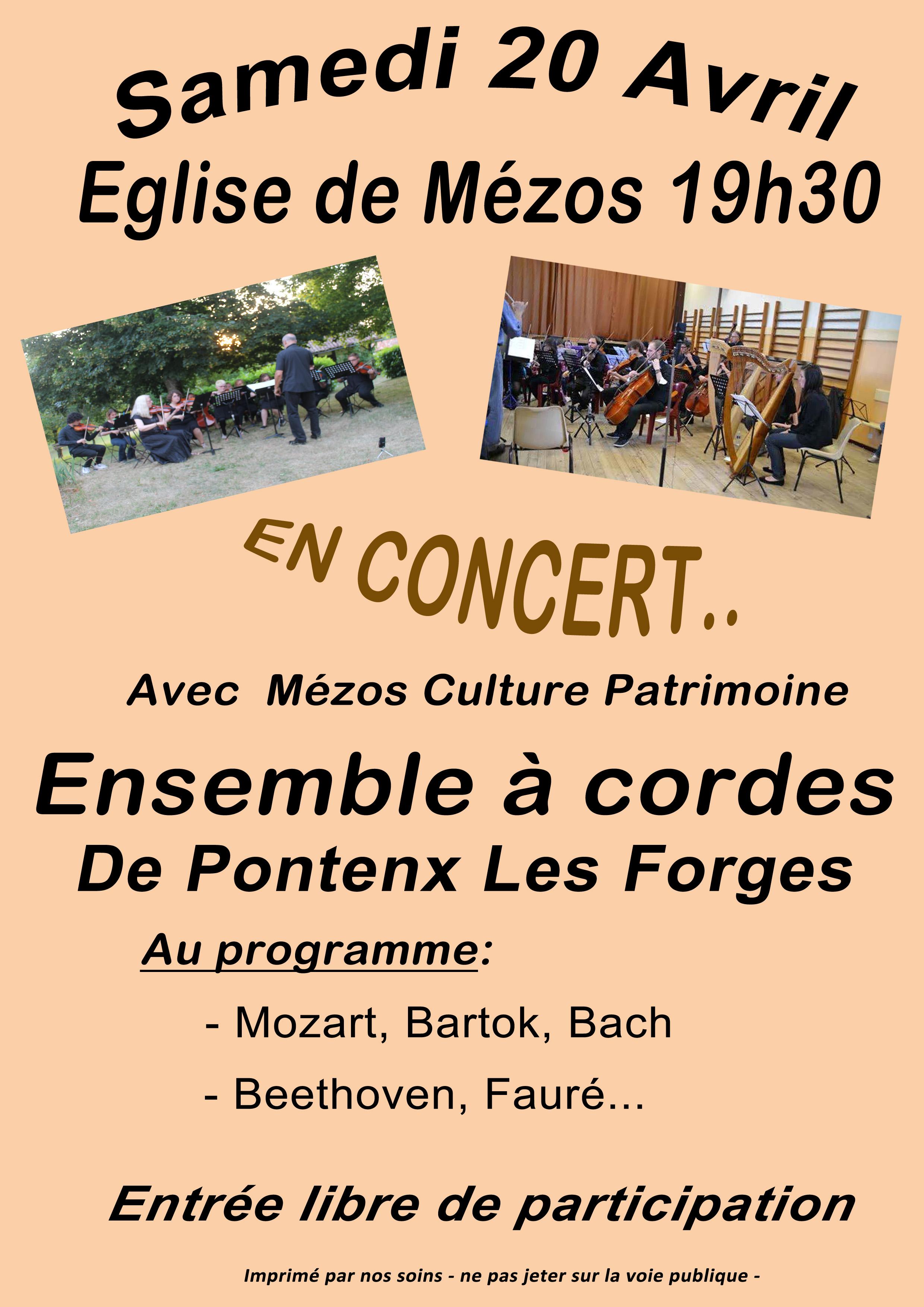 Concert par l'ensemble à cordes de Pontenx