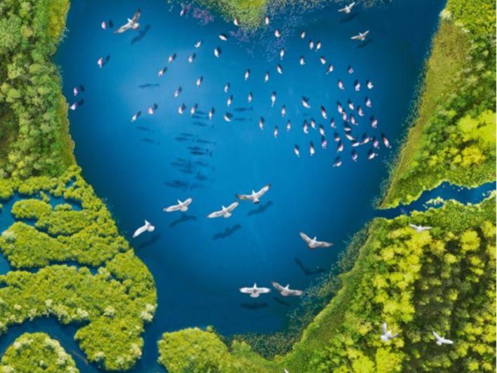 Journée mondiale des zones humides: Le printemps du lac