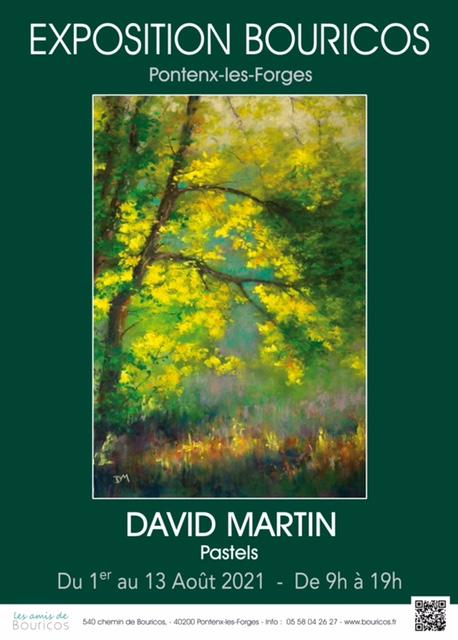 Exposition de Pastels par David Martin